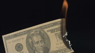 Slow Motion Burning 20 Dollar Bill