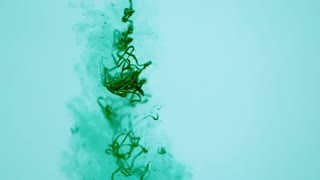 Slow Motion Gooey Green Strands Underwater 2