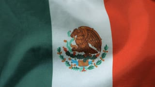 Slow Motion Mexico Flag in the Wind
