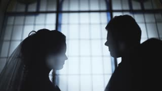 Slow motion shot of a bride and groom standing in profile against the background of large windows
