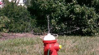 Slow Motion Toy Sprinkler