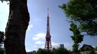 Slow Moving Tracking Shot With View Of Tokyo Tower From City Park