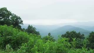 Slow Pan Across Forested Ridge Line, Blue Ridge Mountains