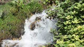 Small Waterfall Rushing Through Foliage 2
