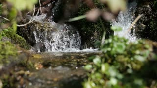Small Waterfall Trickling into Stream