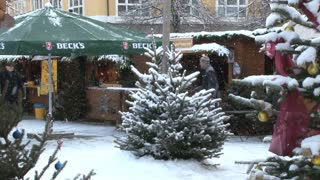 Snow Covered Pine Tree In Plaza