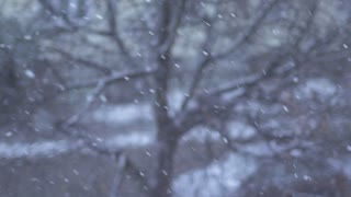 snow winter background slow motion
