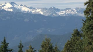 Snowcapped Mountains By Whistler Forest