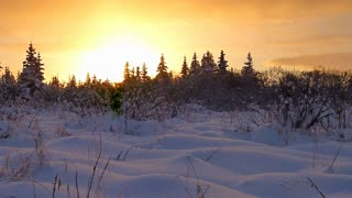 Snowfall Sunset