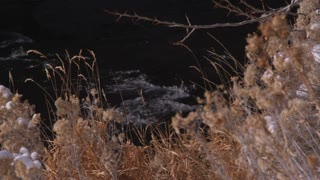 Snowy Landscape in Utah 14