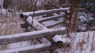 Snowy Landscape in Utah 18
