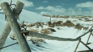 Snowy Landscape in Utah 4