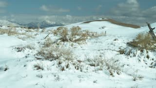 Snowy Landscape in Utah