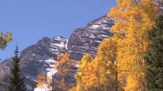Snowy Mountains by Fall Trees