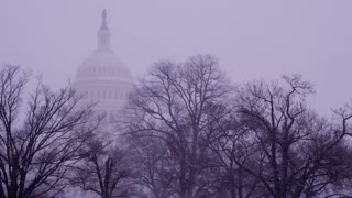 Snowy United States Capital Dome
