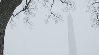 Snowy Washington Monument Framed by Tree