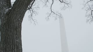Snowy Washington Monument Through Trees