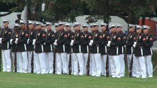 Soldiers Standing Still During Ceremony at Arlington National Cemetery 2