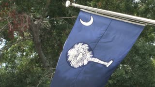 South Carolina Flag Close Up
