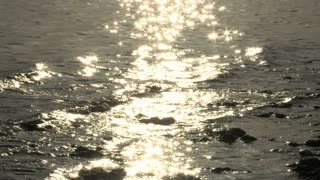 Sparkling Shallow Sea