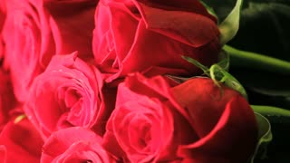 Spinning Bouquet of Red Roses