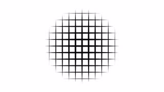 Squares in Circle Transition Matte