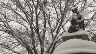 Statue Covered In Snow