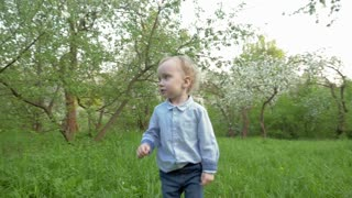 Steadicam slow motion shot of a little boy walking in the garden among the blooming trees.