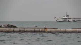 Stemboat on Aegean Sea 2