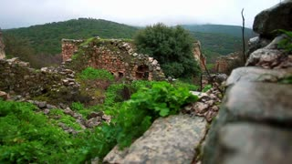 Stone Ruins, Rock Walls, and Greenery 4