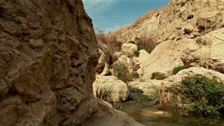 Stream and Pool at Top of Ein Gedi