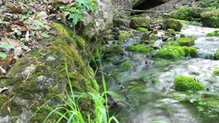 Stream time-lapse panning away from grass