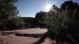 Sun Gleaming Behind Rocks and Shrubs