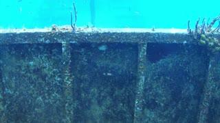 Sunken Shipwreck Underwater