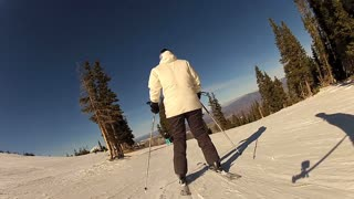 Sunny Day Skier
