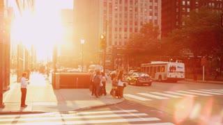 Sunny Glare Crosswalk