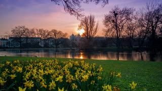 Sunset Nature Spring Timelapse