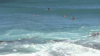 Surfers Catching Waves 2