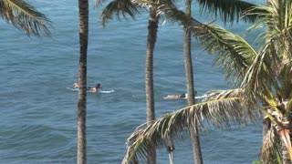Surfers in the Pacific