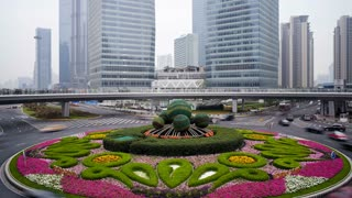 T/L Spherical hedges in central island of roundabout, Century Avenue, Pudong, Shanghai, China