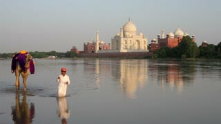 Taj Mahal, UNESCO World Heritage Site, across the Jumna Yamuna River, Man leading camel, Agra, Uttar Pradesh state, India, Asia, MR