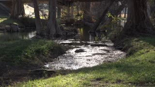 Texas Hill Country stream reflections on pond scum