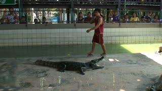 Thailand Wildlife Park