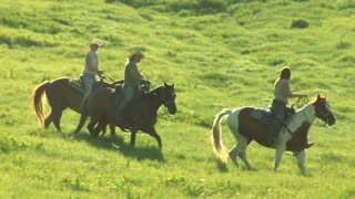 Three Young Women On Horses Trot Across Green Meadow