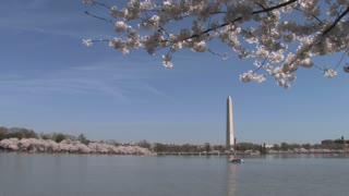Tidal Basin and Washington Monument