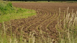 Tilled Farmland