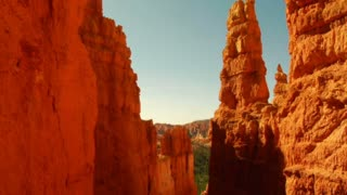 Tilt Down To Canyon In Bryce Canyon National Park