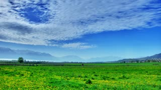 Time Lapse landscape with lush green grass