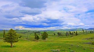 Time Lapse vibrant lush green landscape