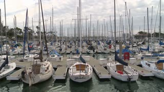 Timelapse Boats In Harbor
